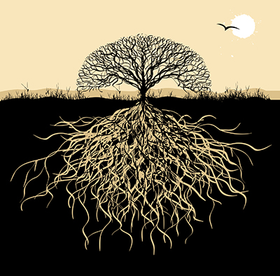 Illustration of tree with deep roots in the earth